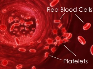 Platelet Separated From Own's Blood