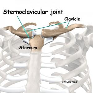 Sternoclavicular Anatomy