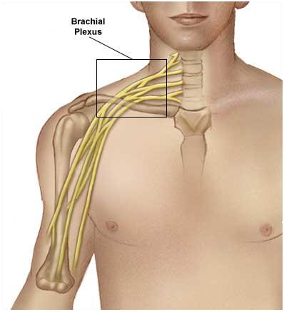 is steroid injection the same as cortisone